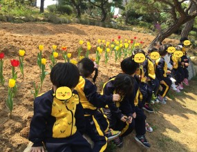 자연을 사랑하는 금비유치원 귀여운5세반 친구들이 숲체험 중 튤립꽃 앞에서 올망졸망 모여있어요~^^